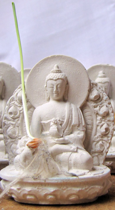 De Tsa Tsa met de gerstekiem